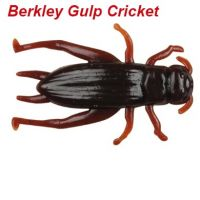 Berkley Gulp! Cricket